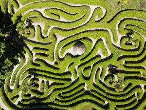 Presentation maze